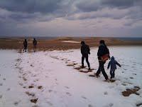 雪化粧した鳥取砂丘